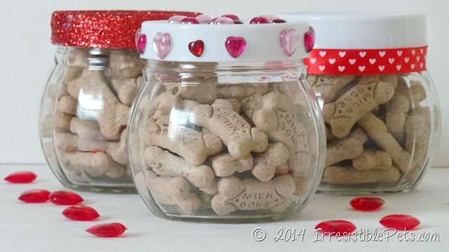 DIY Dog Treat Jar IrresistiblePets.com