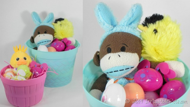 DIY Easter Basket for Dogs IrresistiblePets.com