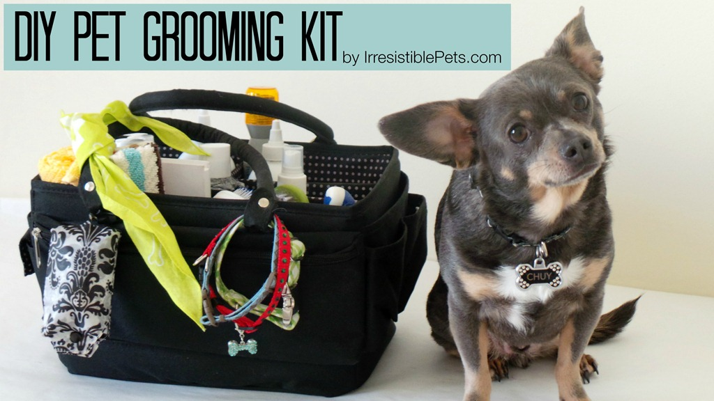 Diy pet grooming kit irresistible pets diy pet grooming kit by irresistiblepets solutioingenieria Images