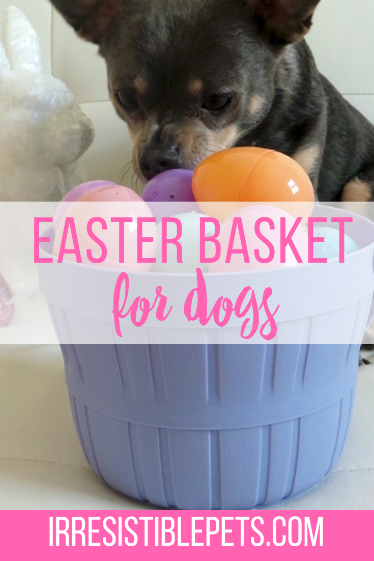 How To Make an Easter Basket for Dogs