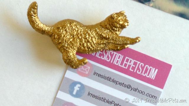 DIY Gold Cat Magnet - IrresistiblePets.com