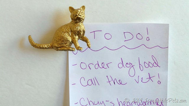 DIY Gold Cat Magnet by IrresistiblePets.com
