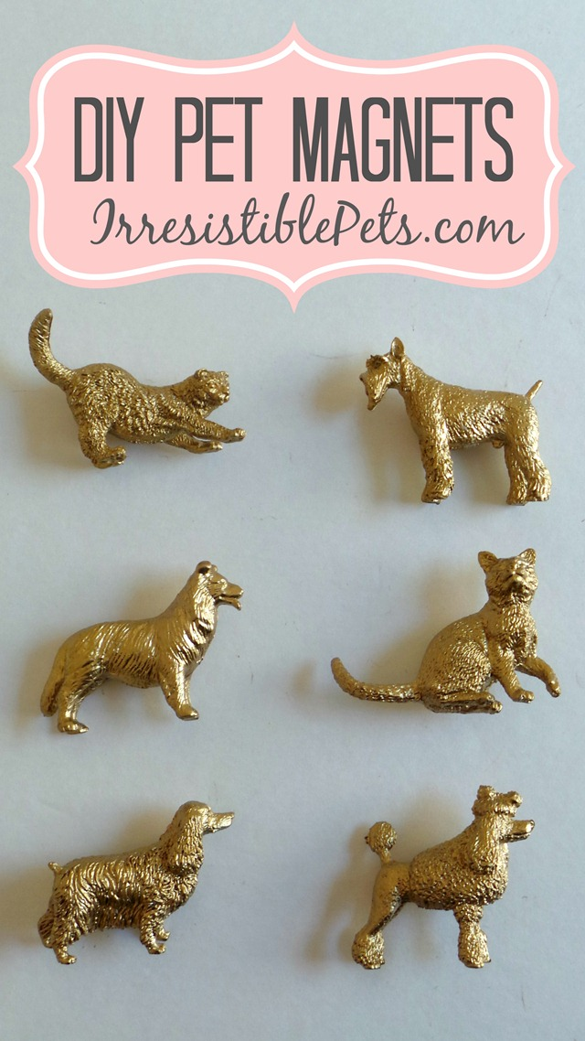 DIY Pet Magnets by IrresistiblePets.com