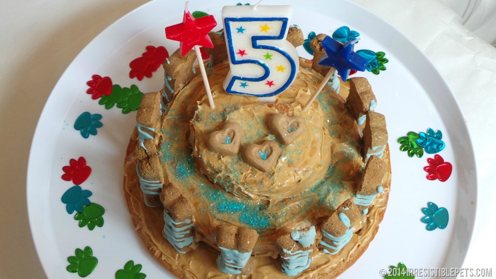 Dog Birthday Cake Recipe For Chuys 5th Birthday