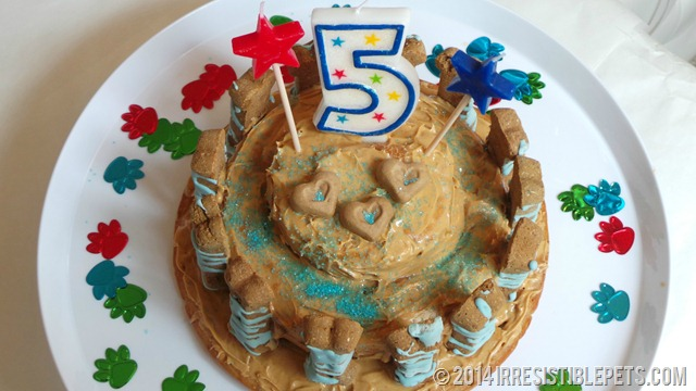 Dog Birthday Cake Recipe 2