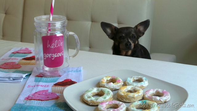 Irresistible Dog Donut Recipe Hello Gorgeous (1)