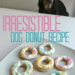 Irresistible Dog Donut Recipe