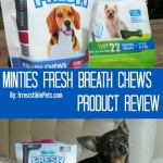 Minties Fresh Product Review