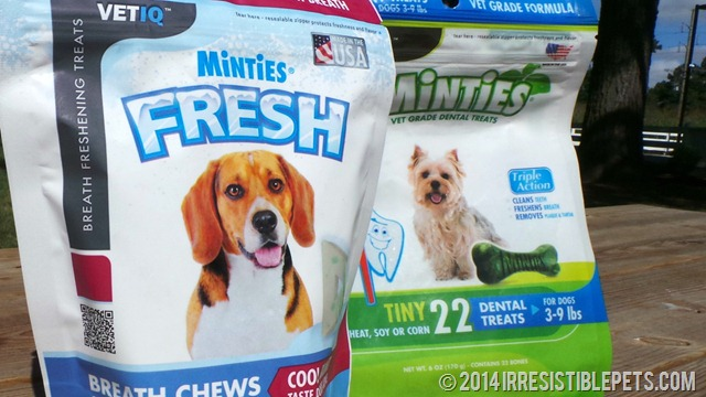 Minties Fresh Breath Chews