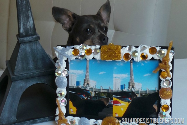 DIY Photo Frame with Chuy