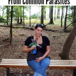 How To Protect Your Dog From Common Parasites with K9 Advantix® II