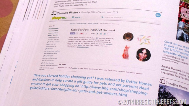 My Social Book BHG Feature