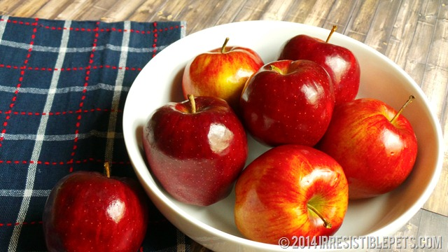 DIY Frozen Apple Dog Treat Recipe - Fresh Apples