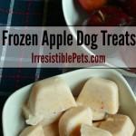 DIY Frozen Apple Dog Treat Recipe