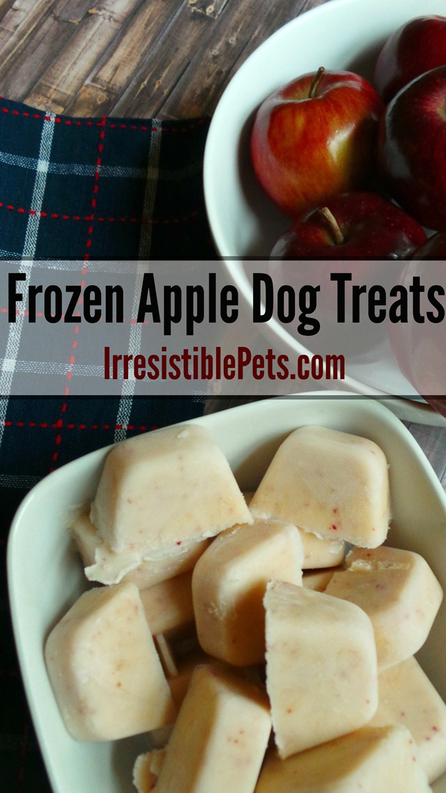 DIY Frozen Apple Dog Treat Recipe by IrresistiblePets.com