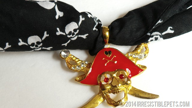 DIY Pirate Dog Costume Pirate Pendant