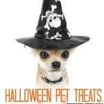 Halloween Pet Treats