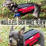 WiggleLess Dog Back Brace Review