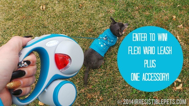 Flexi Vario Leash Giveaway on IrresistiblePets.com