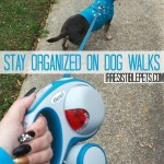 How to Stay Organized on Dog Walks