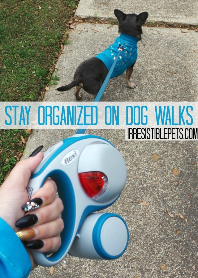 How to Stay Organized on Dog Walks by IrresistiblePets.com