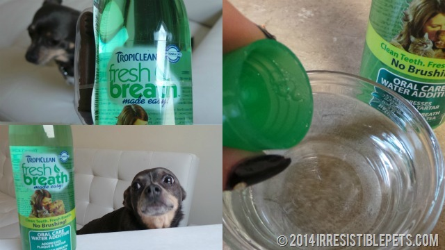 TropiClean Water Additive Review