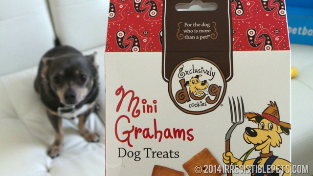 PetBox Review - Mini Grahams
