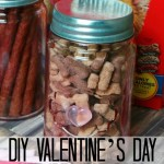 DIY Valentine's Day Gift Idea for Dogs
