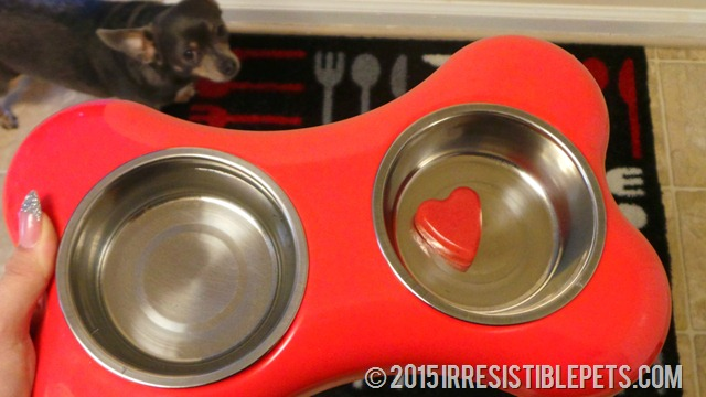 Frozen Strawberry Smoothie Dog Treat Recipe Chuy Chihuahua