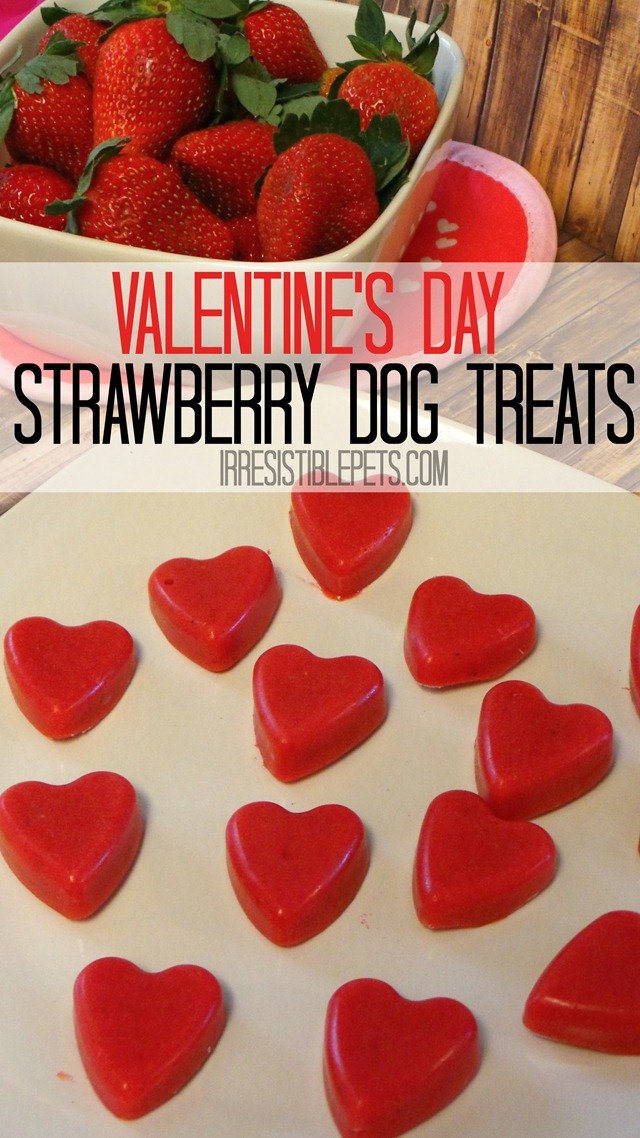 Valentine's Day Strawberry Dog Treats by IrresistiblePets.com