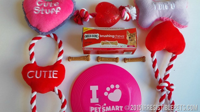 PetSmart Dental Treats Valentines Day