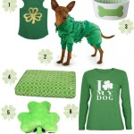 St. Patrick's Day Irresistible Finds for Dogs