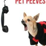 Pet Blogging Pet Peeves