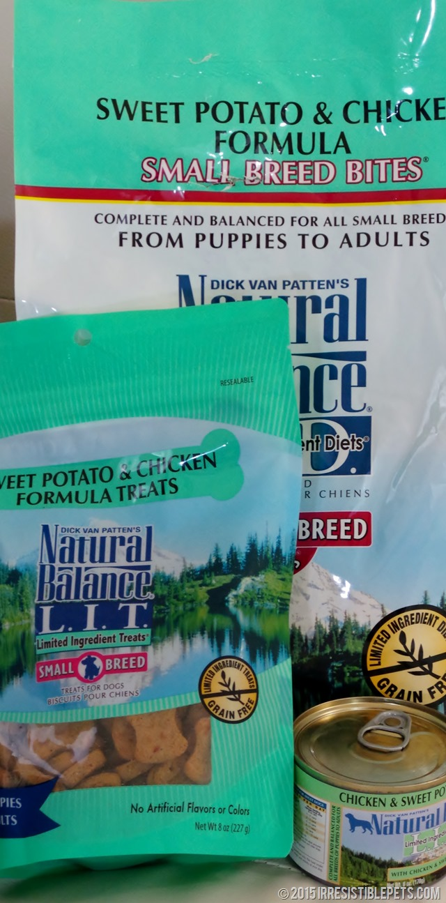 Chuy Chihuahua Shops for Natural Balance Limited Ingredient Diet at PetSmart (13)