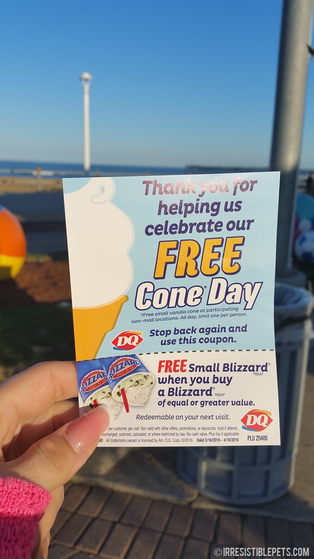 Dairy Queen Free Cone Day