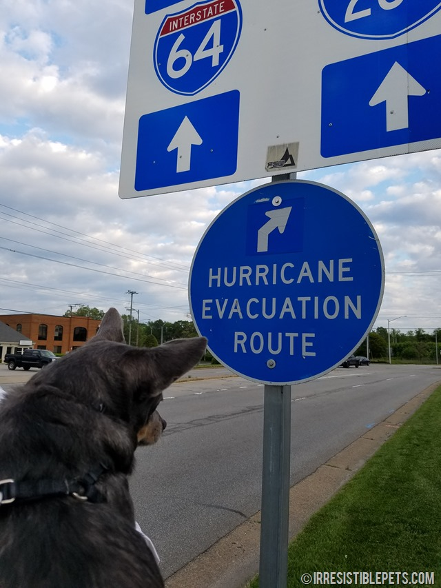 Hurricane Evacuation Route Virginia Beach