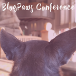 10 Irresistible Secrets About the BlogPaws Conference in Phoenix