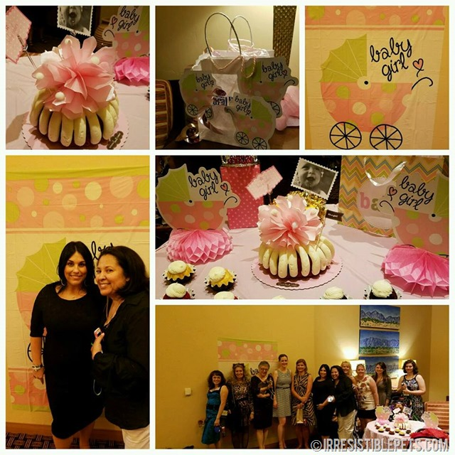 BlogPaws Baby Shower