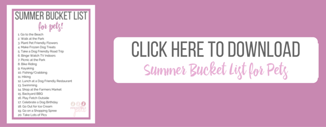 Free Download_Summer Bucket List for Pets (2)