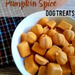 DIY Frozen Pumpkin Spice Dog Treats