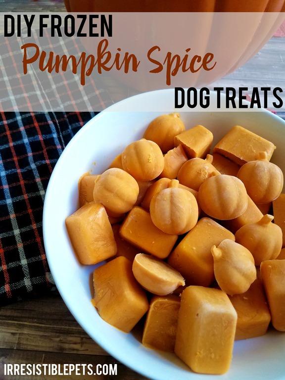 Pumpkin In Dog Food For Diarrhea