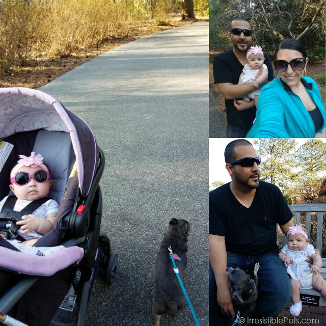 Family Norfolk Botanical Garden