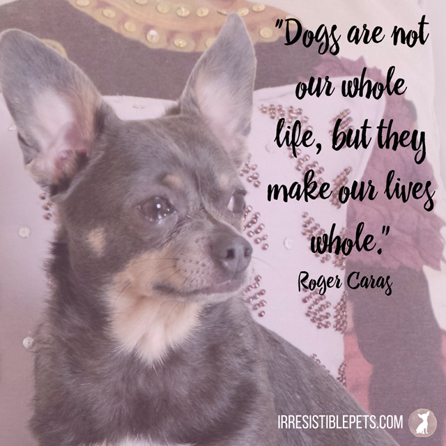 """Dogs are not our whole life, but they make our lives whole.""—Roger Caras (1)"