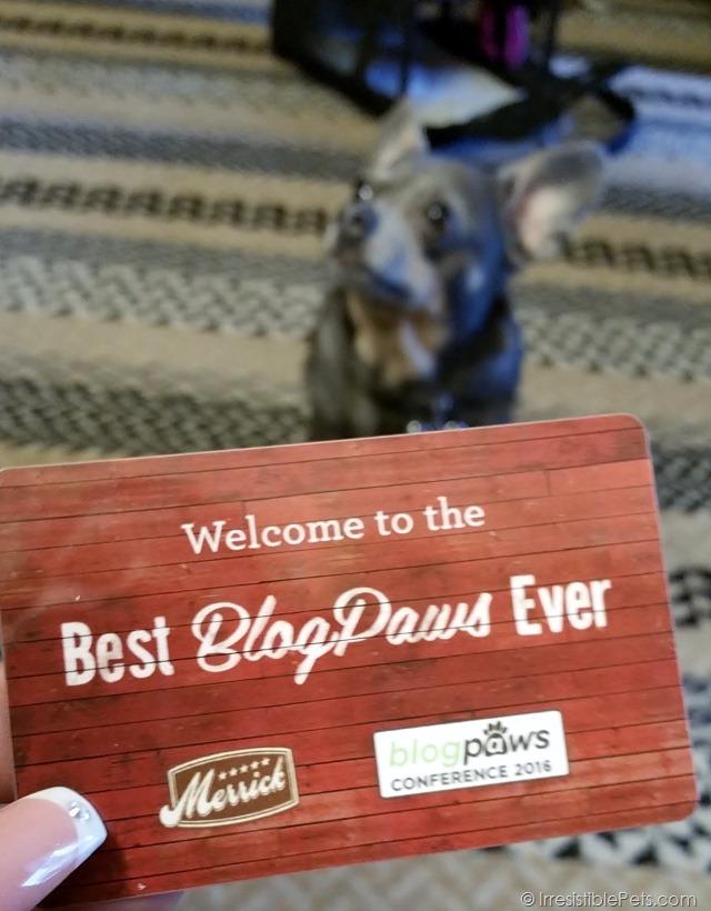 BlogPaws Pet Friendly Blogger Conference