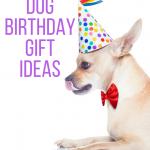 14 Dog Birthday Gift Ideas