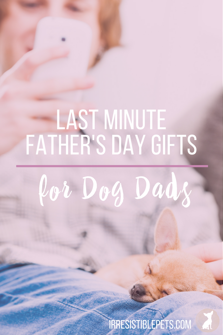 Last Minute Father's Day Gifts for Dog Dads