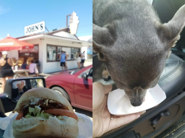 Johns Drive In Dog Friendly Restaurant OBX