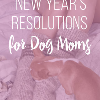 10 New Years Resolutions for Dog Moms #dogmom #newyears