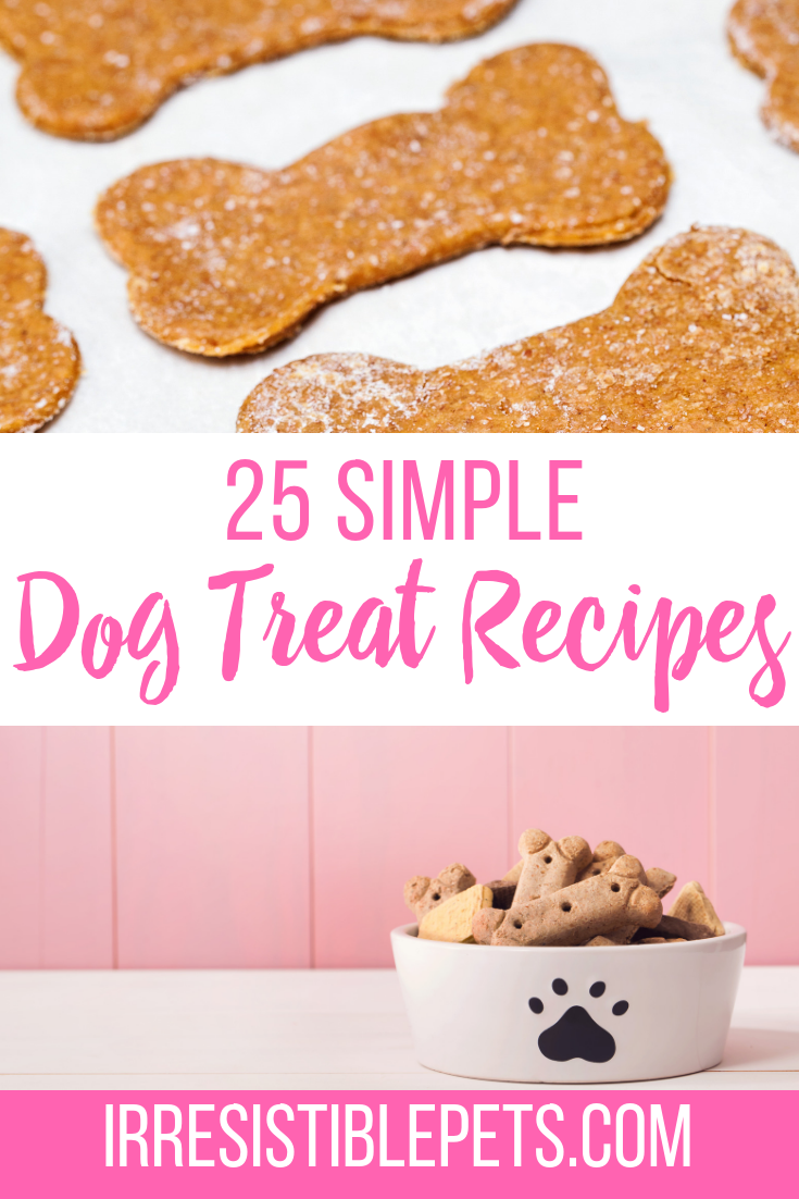 25 Simple Dog Treat Recipes with little to no bake time!