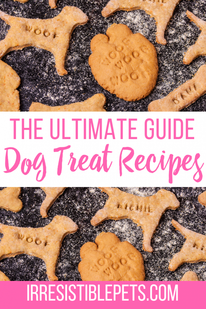 The Ultimate Guide of Dog Treat Recipes